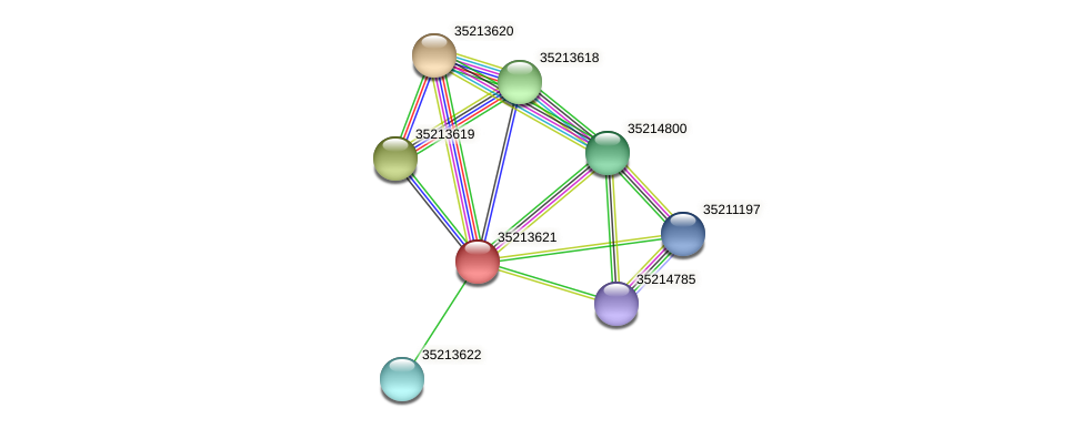 gll3051 protein (Gloeobacter violaceus) - STRING interaction network