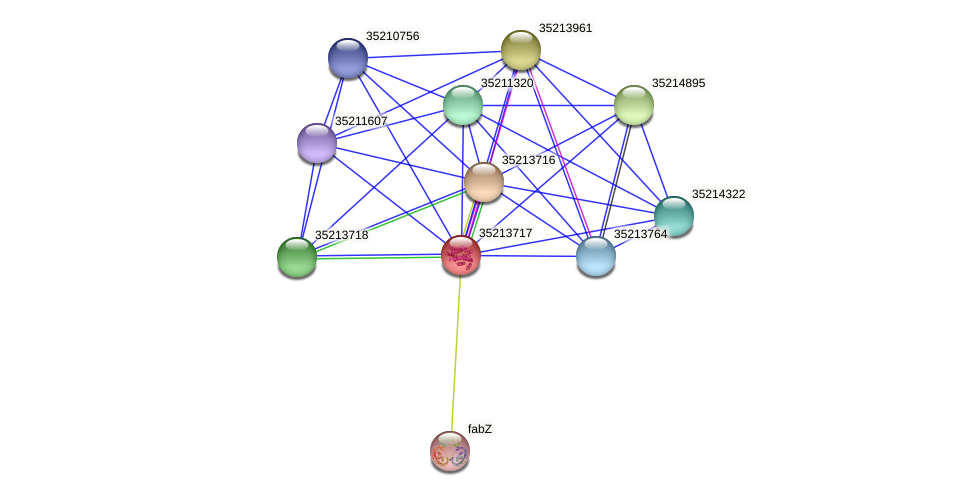 gll3146 protein (Gloeobacter violaceus) - STRING interaction network