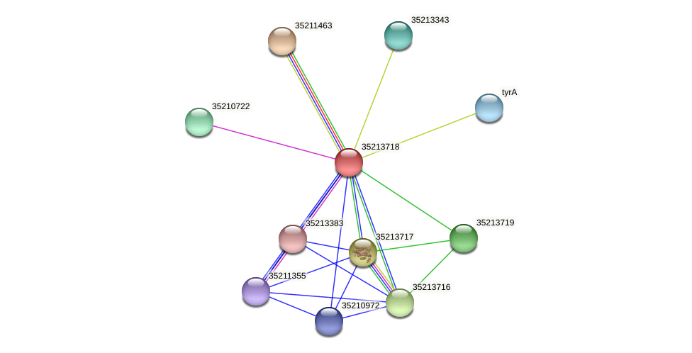 gll3147 protein (Gloeobacter violaceus) - STRING interaction network