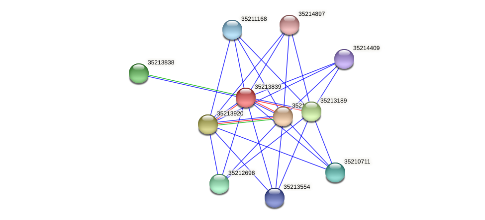 gll3347 protein (Gloeobacter violaceus) - STRING interaction network