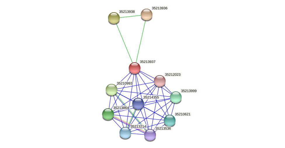 gll3366 protein (Gloeobacter violaceus) - STRING interaction network