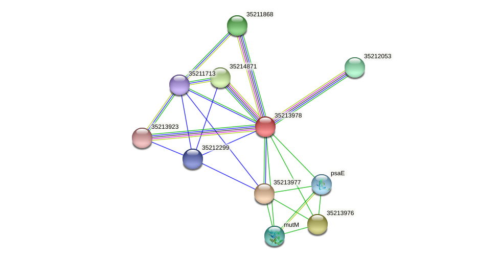 gll3406 protein (Gloeobacter violaceus) - STRING interaction network