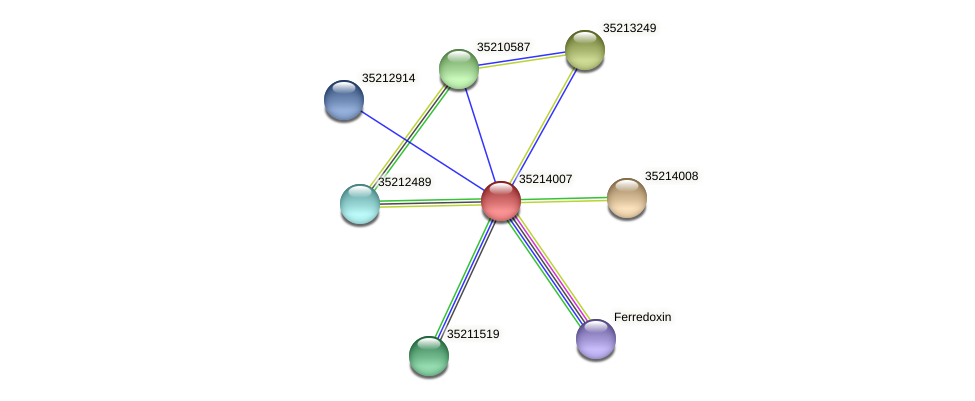 gll3435 protein (Gloeobacter violaceus) - STRING interaction network