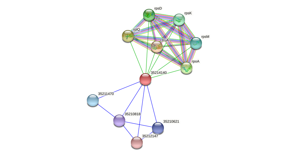 gll3568 protein (Gloeobacter violaceus) - STRING interaction network