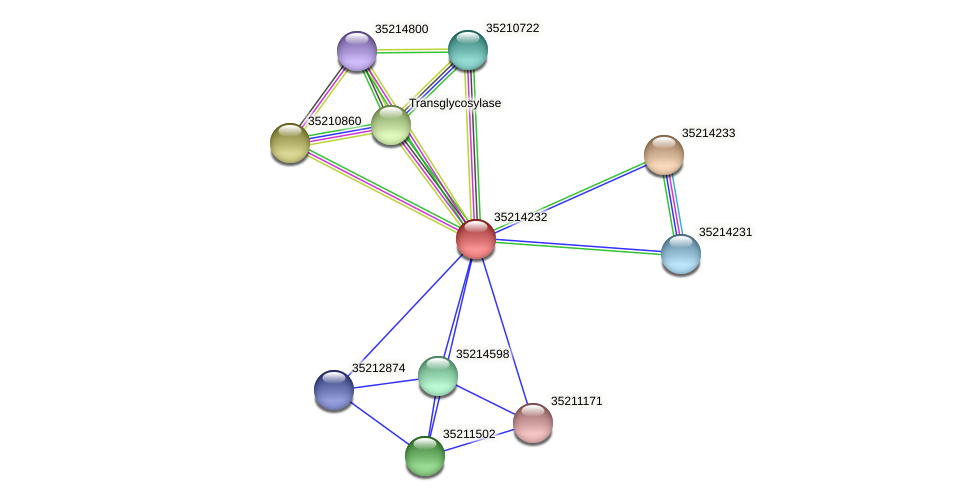 gll3660 protein (Gloeobacter violaceus) - STRING interaction network