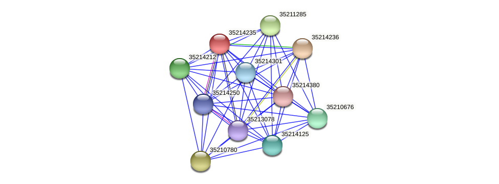 gll3663 protein (Gloeobacter violaceus) - STRING interaction network