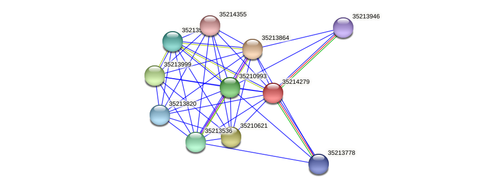 gll3706 protein (Gloeobacter violaceus) - STRING interaction network