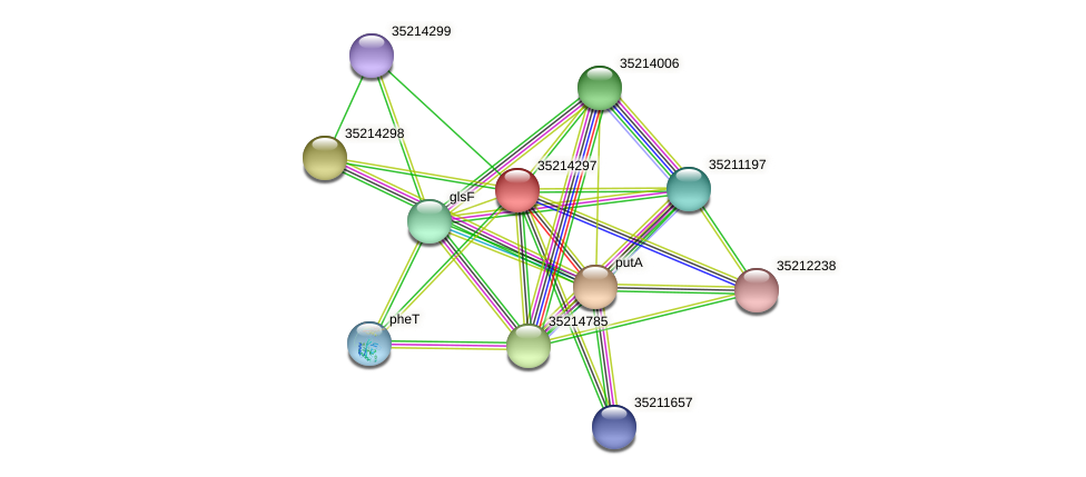 gll3724 protein (Gloeobacter violaceus) - STRING interaction network