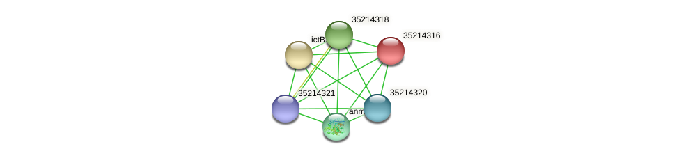 gll3743 protein (Gloeobacter violaceus) - STRING interaction network