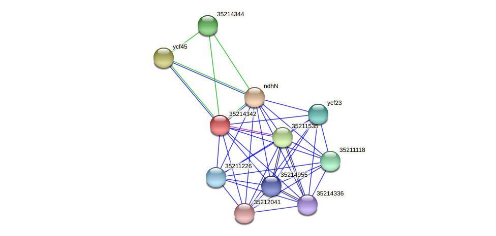 gll3769 protein (Gloeobacter violaceus) - STRING interaction network