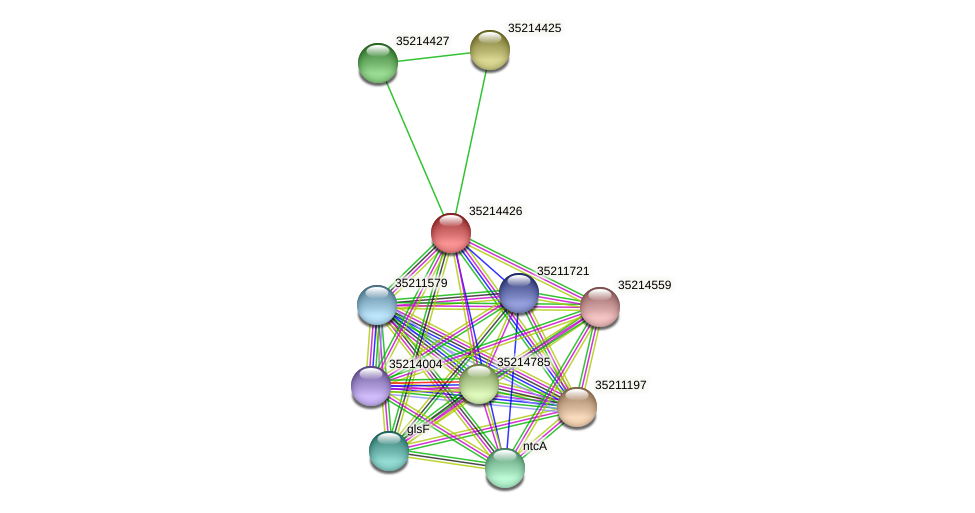 gll3853 protein (Gloeobacter violaceus) - STRING interaction network