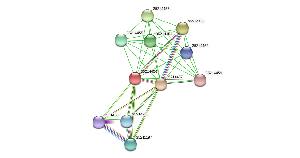 gll3883 protein (Gloeobacter violaceus) - STRING interaction network