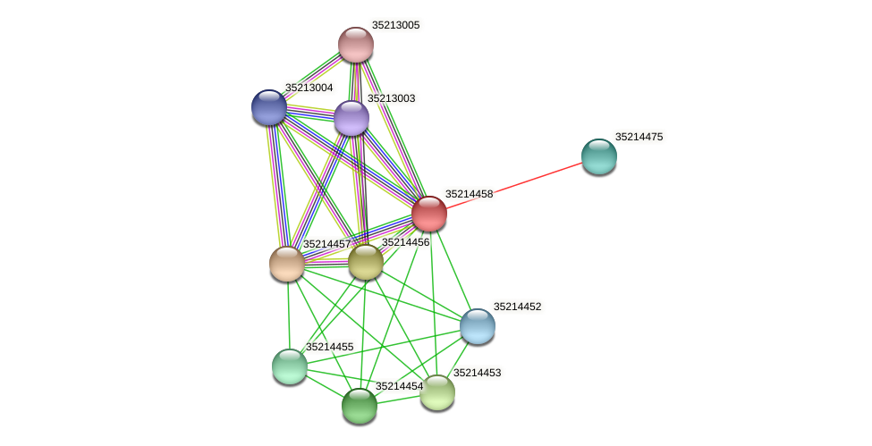 gll3885 protein (Gloeobacter violaceus) - STRING interaction network