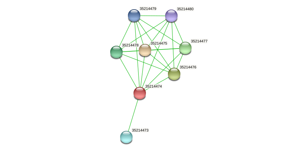 gll3901 protein (Gloeobacter violaceus) - STRING interaction network