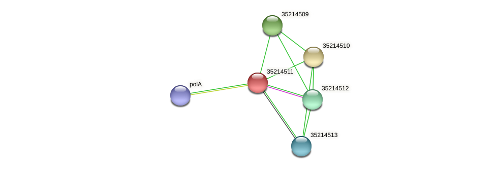 gll3938 protein (Gloeobacter violaceus) - STRING interaction network