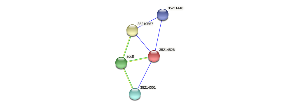 gll3953 protein (Gloeobacter violaceus) - STRING interaction network