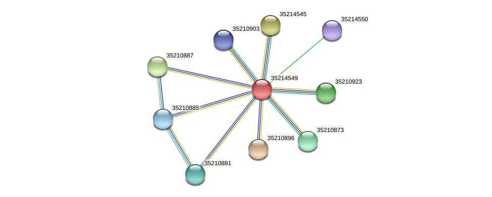 gll3976 protein (Gloeobacter violaceus) - STRING interaction network