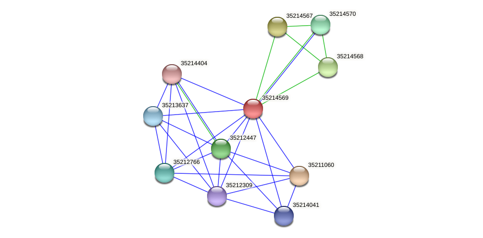 gll3996 protein (Gloeobacter violaceus) - STRING interaction network