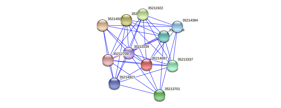 gll4013 protein (Gloeobacter violaceus) - STRING interaction network