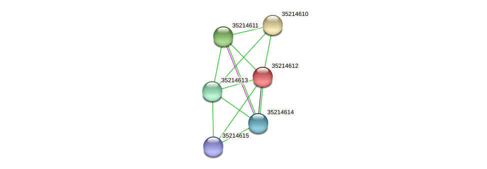 gll4038 protein (Gloeobacter violaceus) - STRING interaction network