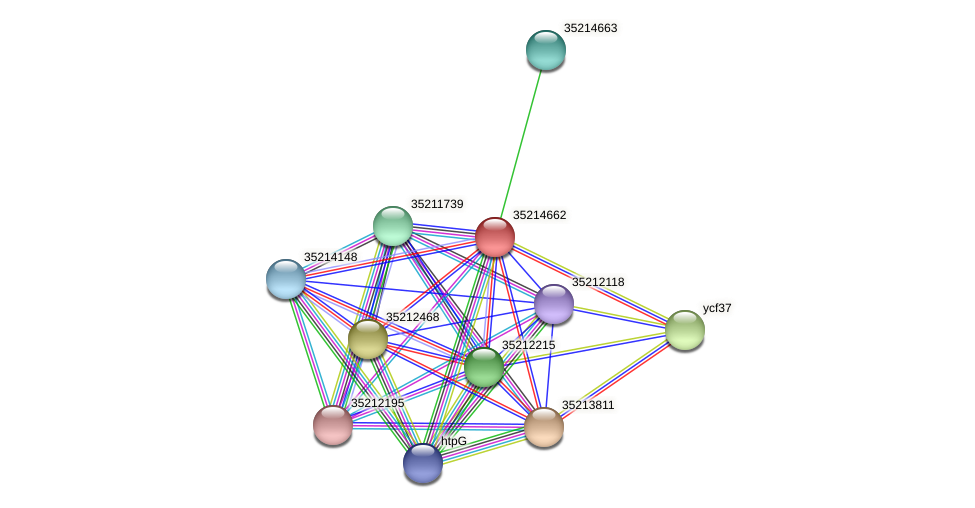 gll4088 protein (Gloeobacter violaceus) - STRING interaction network