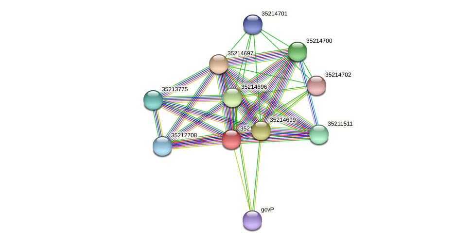 gll4124 protein (Gloeobacter violaceus) - STRING interaction network