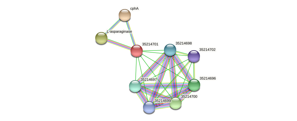 gll4127 protein (Gloeobacter violaceus) - STRING interaction network