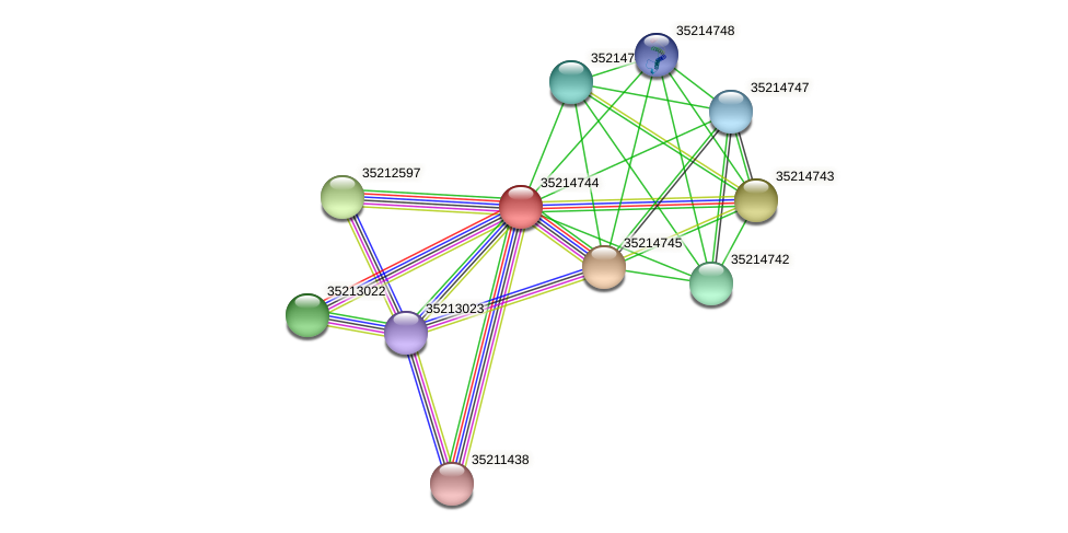 gll4170 protein (Gloeobacter violaceus) - STRING interaction network