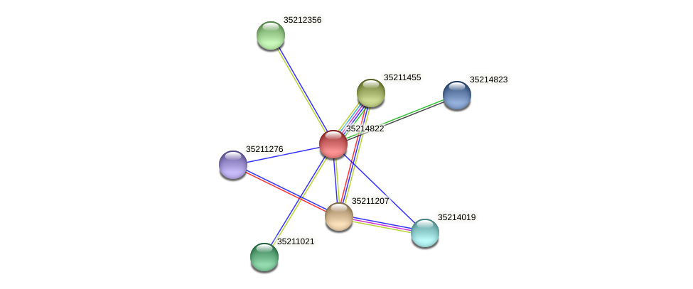gll4248 protein (Gloeobacter violaceus) - STRING interaction network
