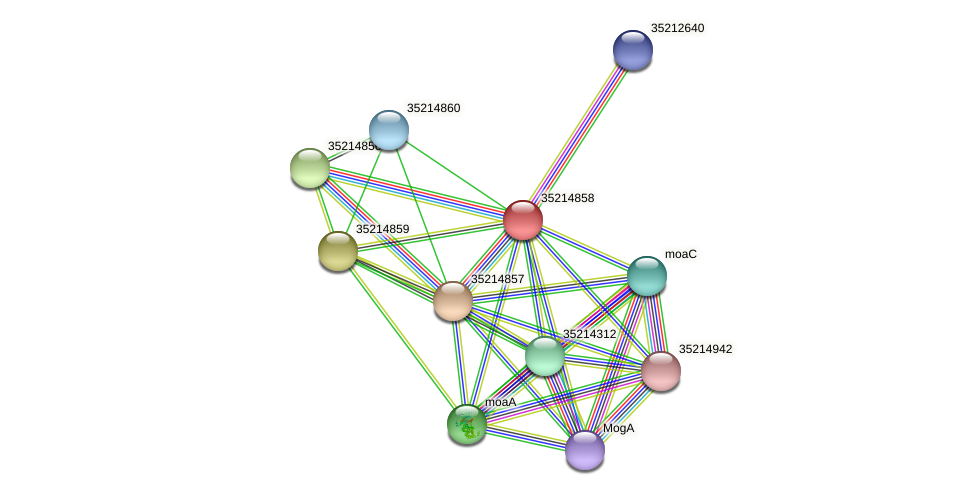 gll4283 protein (Gloeobacter violaceus) - STRING interaction network