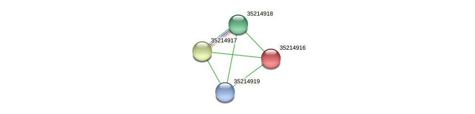 gll4341 protein (Gloeobacter violaceus) - STRING interaction network