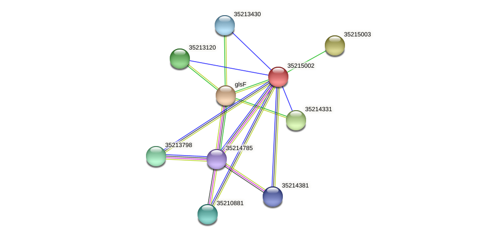 gll4427 protein (Gloeobacter violaceus) - STRING interaction network