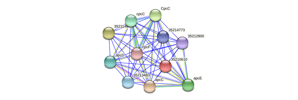 glr0050 protein (Gloeobacter violaceus) - STRING interaction network