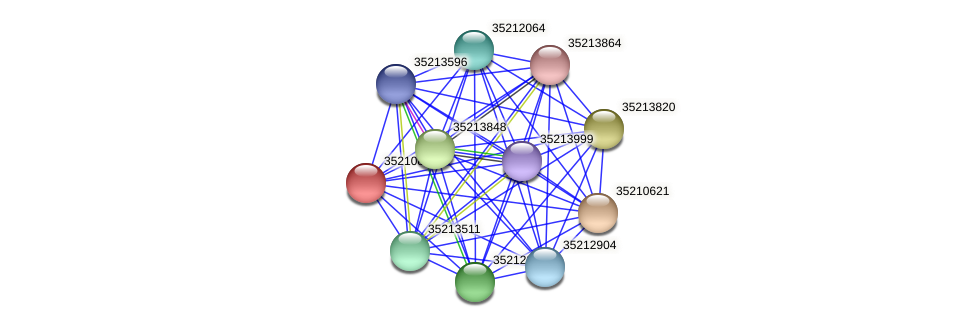 glr0257 protein (Gloeobacter violaceus) - STRING interaction network