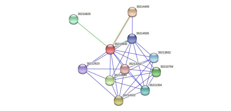 glr0270 protein (Gloeobacter violaceus) - STRING interaction network