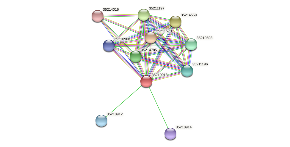 glr0352 protein (Gloeobacter violaceus) - STRING interaction network