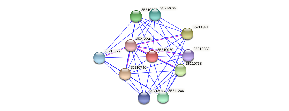 glr0359 protein (Gloeobacter violaceus) - STRING interaction network
