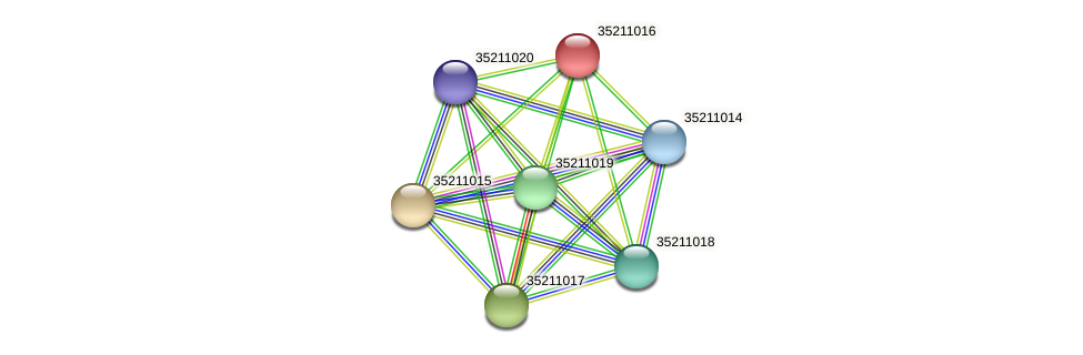 glr0455 protein (Gloeobacter violaceus) - STRING interaction network