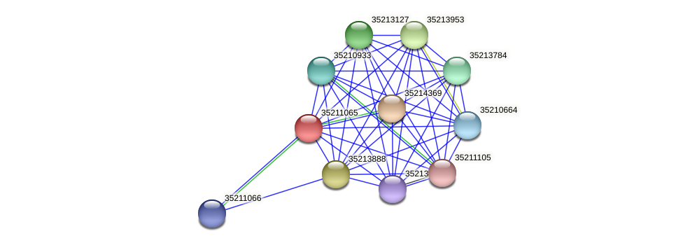 glr0504 protein (Gloeobacter violaceus) - STRING interaction network