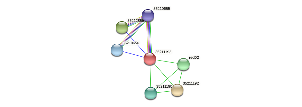 glr0631 protein (Gloeobacter violaceus) - STRING interaction network