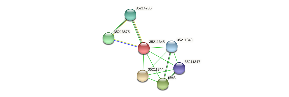glr0783 protein (Gloeobacter violaceus) - STRING interaction network