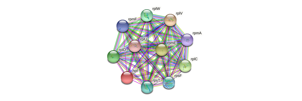 glr0786 protein (Gloeobacter violaceus) - STRING interaction network