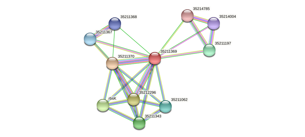 glr0807 protein (Gloeobacter violaceus) - STRING interaction network