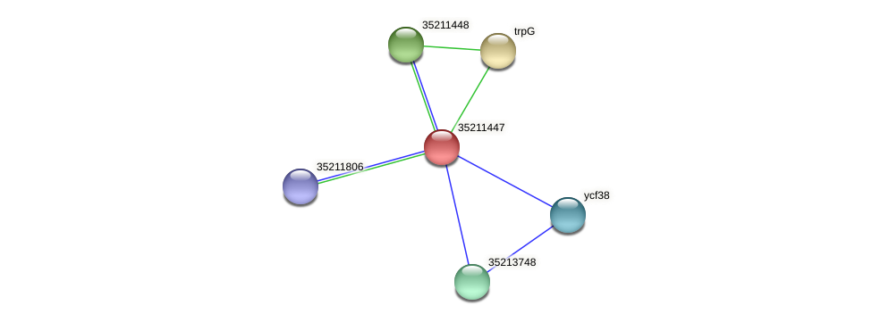 glr0884 protein (Gloeobacter violaceus) - STRING interaction network