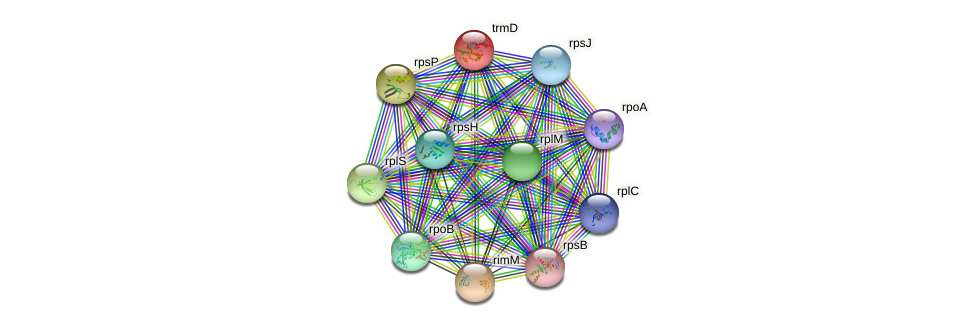trmD protein (Gloeobacter violaceus) - STRING interaction network