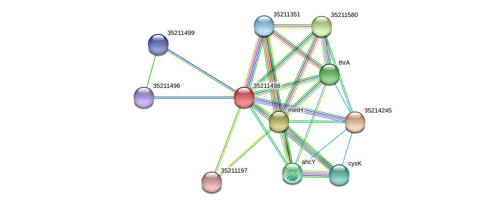 glr0935 protein (Gloeobacter violaceus) - STRING interaction network
