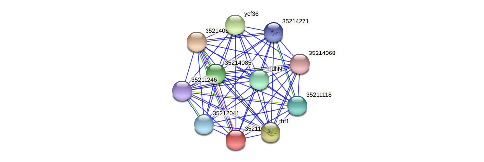 glr1039 protein (Gloeobacter violaceus) - STRING interaction network