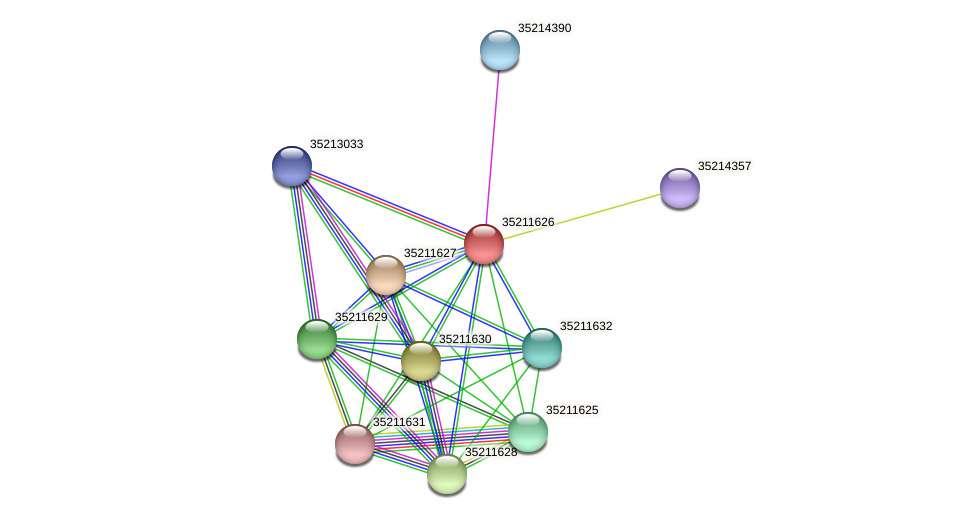 glr1063 protein (Gloeobacter violaceus) - STRING interaction network