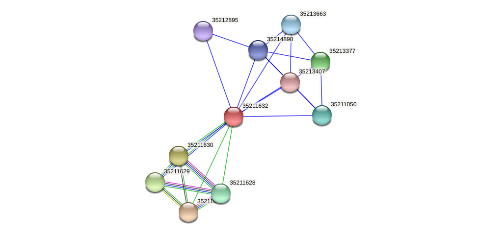 glr1069 protein (Gloeobacter violaceus) - STRING interaction network