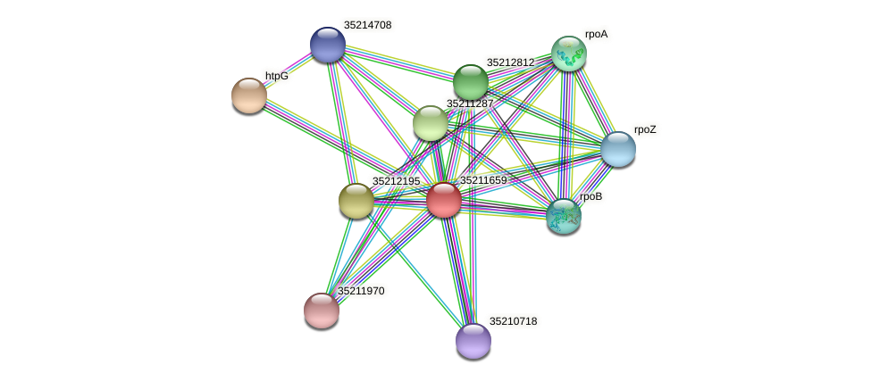 glr1096 protein (Gloeobacter violaceus) - STRING interaction network